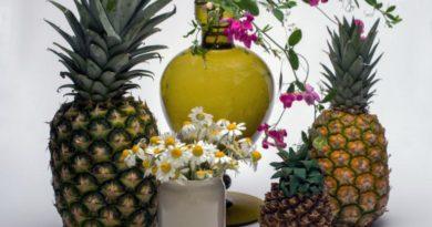 Zdraví s ananasem, ovocné čatní