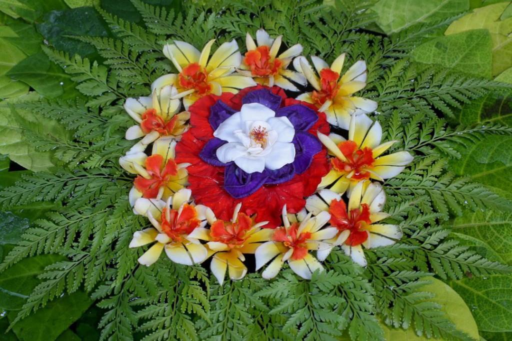 flowers-1255959_1280