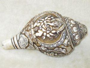 snail-1742552_1920