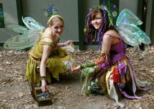 fairy-962574_1920