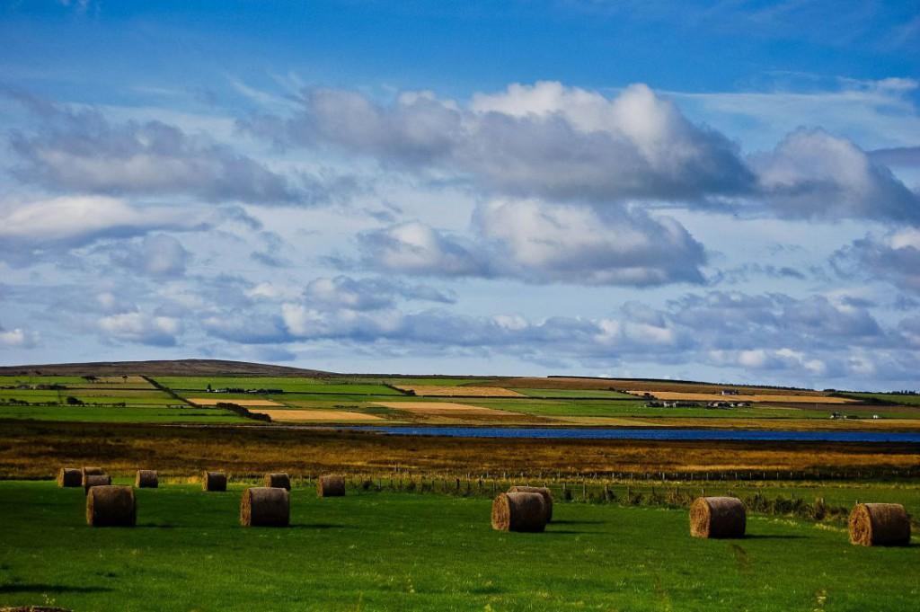 landscape-601230_1920