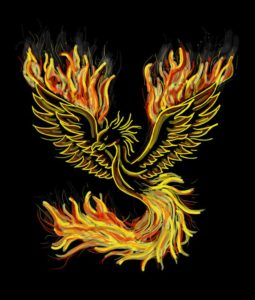 phoenix-1440452_1920