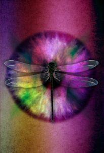 abstract-eye-704121_1280