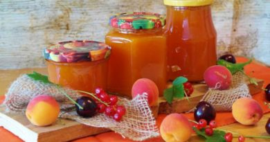 Meruňky pro vitalitu a zdraví