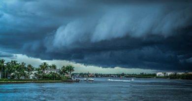 Božská bouře - David E. Schoen