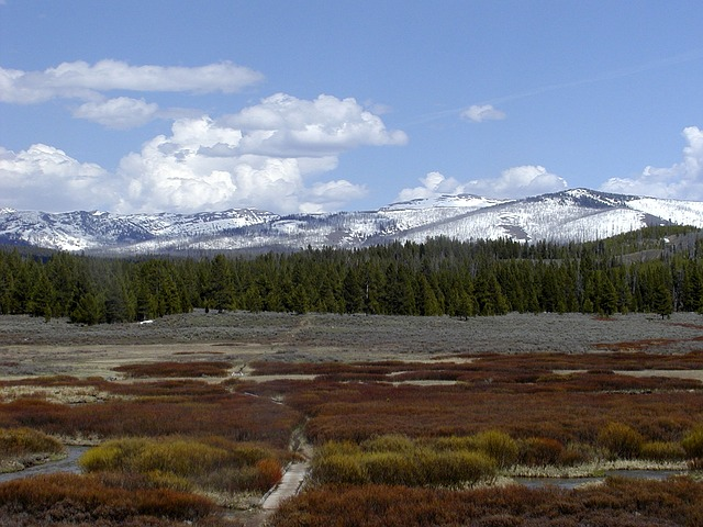 yellowstone-national-park-52960_640