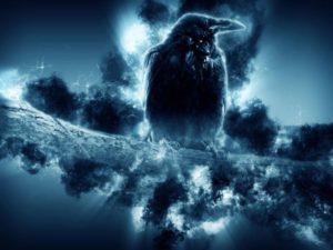 crow-1621886_1920