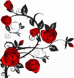 rose-297348_1280