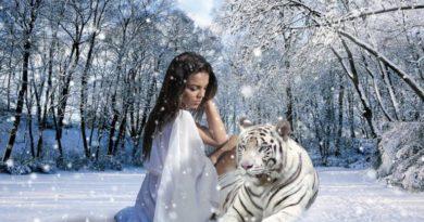 Totemové zvíře - neohrožený tygr