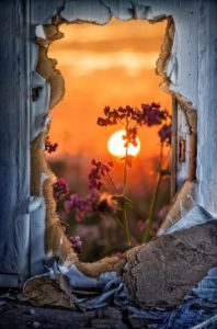door-1781733_1920