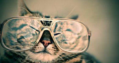 Oční cviky pro lepší zrak