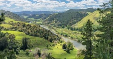 """První řeka na světě: """"Živá bytost"""""""