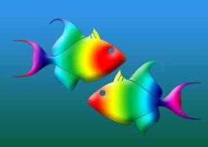 Ryby - charismatické znamení