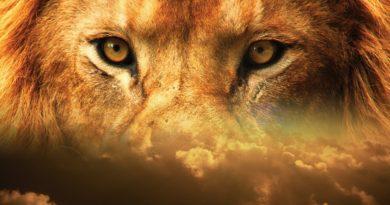 Energie Lví Brány a diamantové kódy boha Dia